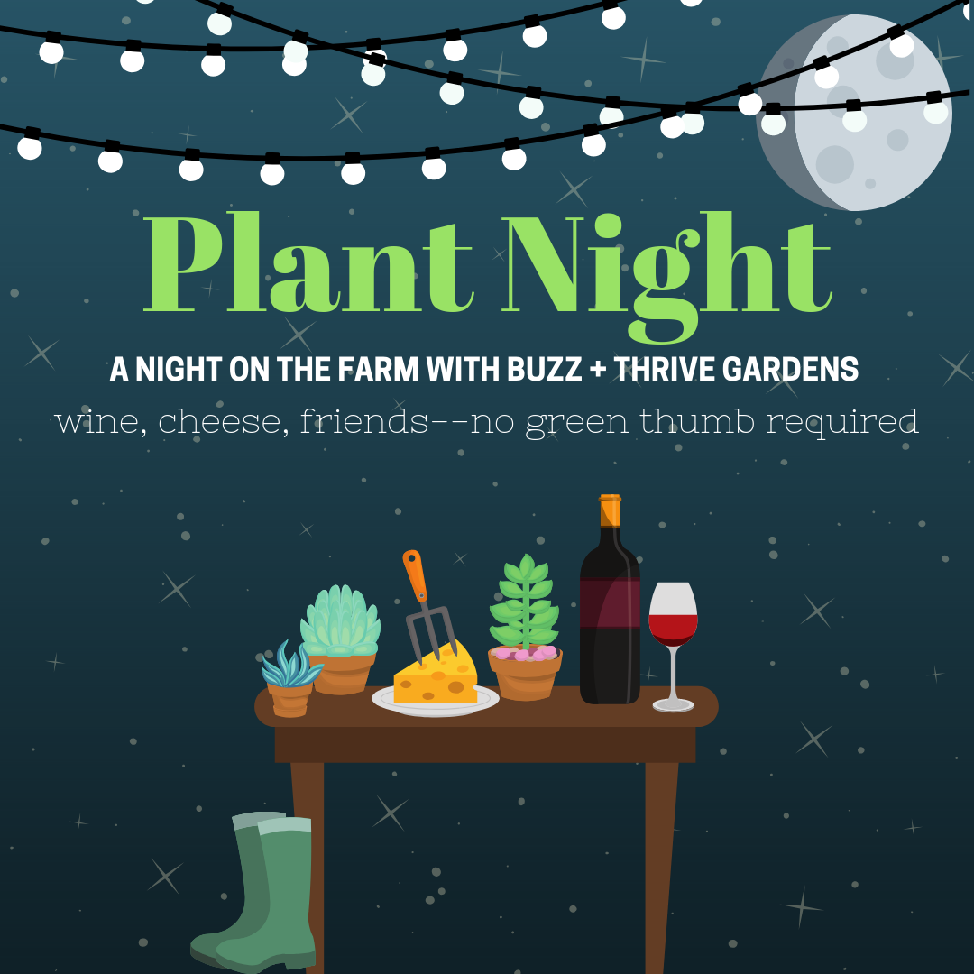 plant night (2)